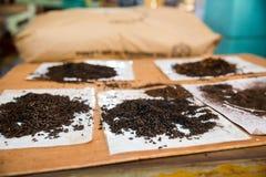 Collection de vue de foyer sélectif de thés de la Ceylan Images stock
