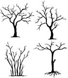 Collection of dead trees. Illustration of collection dead trees Stock Photography