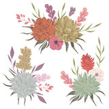 Collection decorative floral design elements for wedding invitations and birthday cards. Succulents, flowers and leaves. Royalty Free Stock Photos
