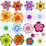Collection decorative flowers Royalty Free Stock Photos