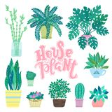 Collection of decorative houseplants isolated on white background. Bundle of trendy plants growing in pots or planters. Set of bea royalty free illustration