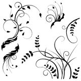 Collection for designers, meadow, plants vector set Royalty Free Stock Photography