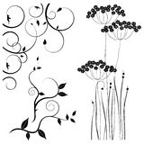 Collection for designers, meadow, plants vector set Stock Photos