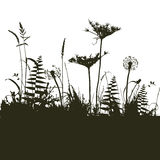 Collection for designers, plant vector Stock Photography