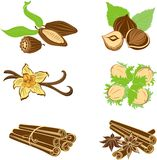 Collection of dessert ingredients. Hazelnuts, Cocoa beans, Vanil. La pods, Anise, and Cinnamon isolated on white Royalty Free Stock Photos