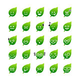 Collection of difference emoticon icon of leaf on the white back Royalty Free Stock Photo