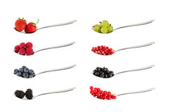 Collection of different berries. royalty free stock images