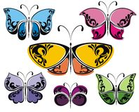 Collection of different butterflies Stock Photos