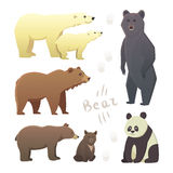Collection with different cartoon bears isolated on white background. Illustration with different bears isolated on white background Royalty Free Stock Photos