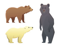 Collection with different cartoon bears isolated on white background. Vector broun and black american bear. Set Wildlife Stock Photos