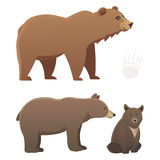 Collection with different cartoon bears  on white background. Vector broun and black american bear. Set Wildlife Stock Photos