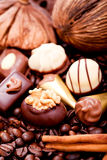 Collection of different chocolate pralines truffels Stock Photography