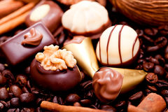 Collection of different chocolate pralines truffels Stock Images