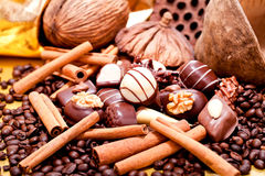 Collection of different chocolate pralines truffels Royalty Free Stock Image