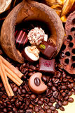 Collection of different chocolate pralines truffels Stock Image