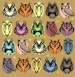 Set of cute owls Royalty Free Stock Image