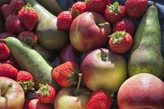 A collection of different fruits. Apples and strawberries stock photos