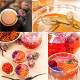 Collection of different herbal tea infusion collage Stock Photography