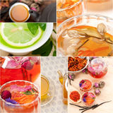 Collection of different herbal tea infusion collage Royalty Free Stock Image