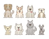 Hand drawn cute dogs collection. Collection of different kinds of dogs isolated on white background. Hand drawn dogs sitting in front view position. Vector vector illustration
