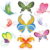Collection of different multicolored butterfly Stock Photos