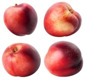 Isolated nectarines. Collection of different nectarine fruits isolated on white background with clipping path royalty free stock image