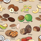 Collection of different nuts pattern Stock Photos