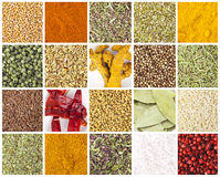 Collection of different spices and herbs. Different spices and herbs isolated on white background, includes soft shadows royalty free stock photo