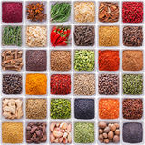 Collection of different spices and herbs. Isolated on white background stock photo