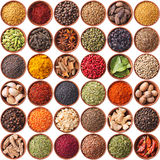 Collection of different spices and herbs isolated on white Stock Images