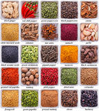 Collection of different spices and herbs. Isolated on white background royalty free stock image