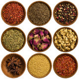 Collection of different spices Royalty Free Stock Photos