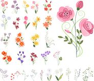 Collection of different stylized flowers Stock Photos