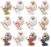 Collection of different types of salt isolated on Royalty Free Stock Images