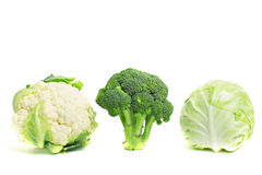 Collection of different varieties of cabbage on a white. Royalty Free Stock Photography