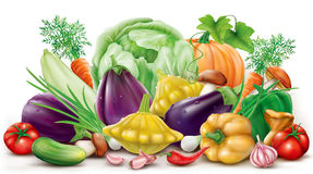 Collection different vegetables Royalty Free Stock Photography