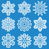 Collection of different white snowflakes Stock Images