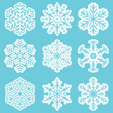 Collection of different white snowflakes Stock Photos