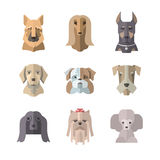 Collection of dog icons in flat style Stock Photo