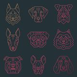 Collection of dog`s heads created in simple geometric style. Stock Images