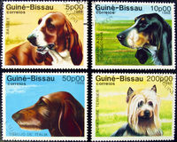 Collection of dog stamps. Royalty Free Stock Images