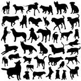 Collection of dog vector Royalty Free Stock Photos