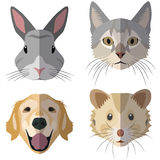 Collection of domestic animal heads Stock Photo