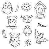 Collection of doodle elements and owls on white background. Set of birds drawn in simple style. Nesting box owls and feather royalty free illustration