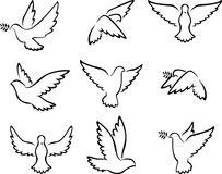 Collection of Dove birds logo for peace concept and wedding design Stock Image