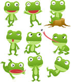 Collection drôle de dessin animé de grenouille Photo stock