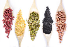 Collection dry beans Stock Images