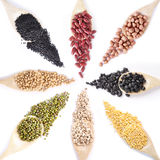 Collection dry beans Stock Image