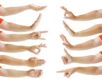 Collection du geste de main de la femelle d'isolement sur le fond blanc image libre de droits