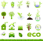 Collection Eco Design Elements, Isolated On White Royalty Free Stock Photography